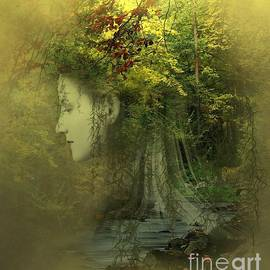 Ali Oppy - Forest Lights