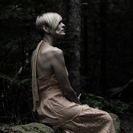 Forest Repose, desaturated by Tim Beebe