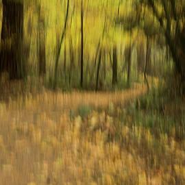 Linda Bickerton-Ross - Forest Walk 5