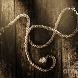 Jorgo Photography - Wall Art Gallery - Forever a sailor