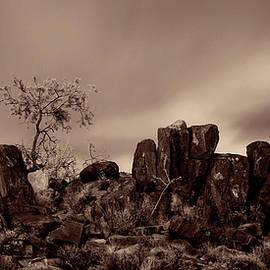 Fortitude Panoramic by Christine Hauber