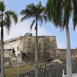 Fortress through the Palms by Deborah Napelitano