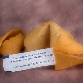 Fortune Cookie Fail by Tom Mc Nemar