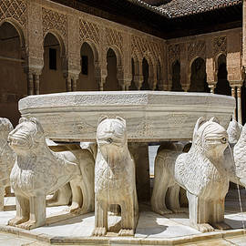 Fountain of lions - Fuente de los leones by Juan Carlos Ballesteros