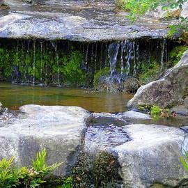 Fountain In A Japanese Garden by Susan Lafleur