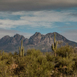 Four Peaks Painterly by Teresa Wilson