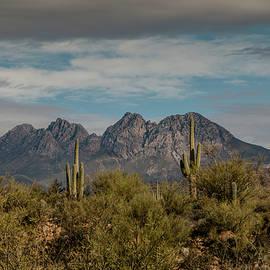 Four Peaks by Teresa Wilson