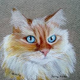 Jamie Frier - Foxey