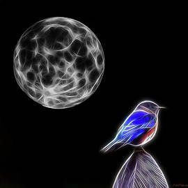 Ericamaxine Price - Fractal Moon and Bluebird