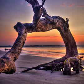 Reid Callaway - Framed Driftwood Beach Jekyll Island St Simons Island Art