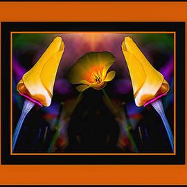 Maria Coulson - Golden Buds