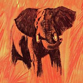 Fred Bear Elephant 1965 by Movie Poster Prints
