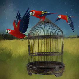 Ericamaxine Price - Freeing the Macaws - Painting