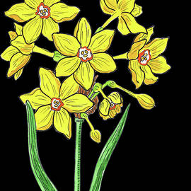 French Daffodil Watercolour  - Irina Sztukowski