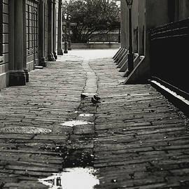 French Quarter Alley by KG Thienemann