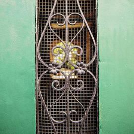 Scott Pellegrin - French Quarter Window to the Courtyard