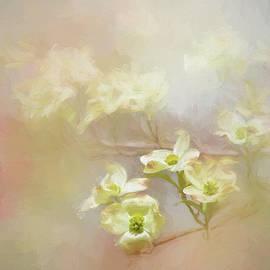Fresh Dogwood Blooms by Jai Johnson