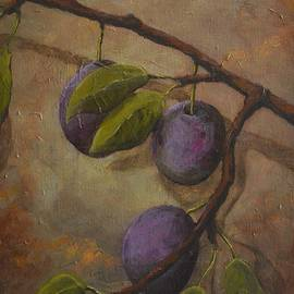Fresh Plums by Kimberly Benedict