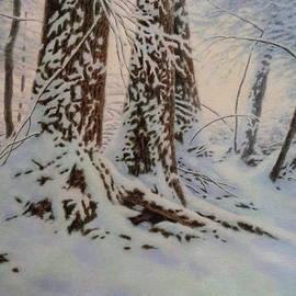 Barry DeBaun - Fresh Snow