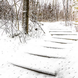 Fresh Snow On The Stairs by Phill Doherty