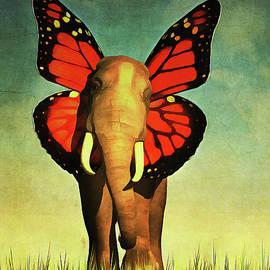 Friendly Elephant by Jan Keteleer