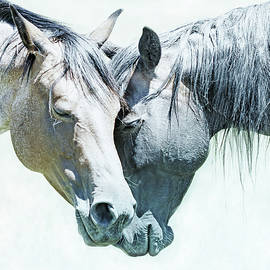Jennie Marie Schell - Friendship of Horses