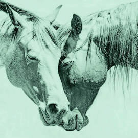 Jennie Marie Schell - Friendship of Horses Teal