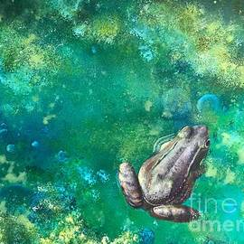 Frog in a Puddle by Ameris Grapa