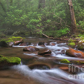 Thomas Schoeller - From The Mist - Oconaluftee River