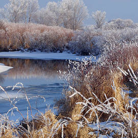 James Peterson - Frosted River