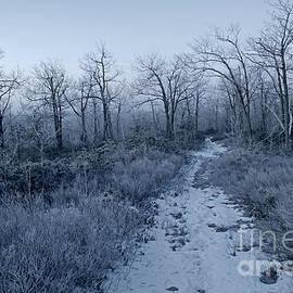 John Stephens - Frosty Dawn Mysterious Snowy Path