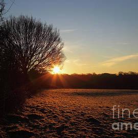James Brunker - Frosty Winter Morning in the Weald of Kent England