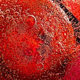 Frozen Balls Four by Bob Orsillo