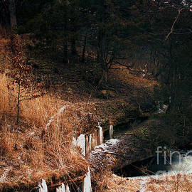 Frozen Falls Near Franklin Creek by Laura Birr Brown