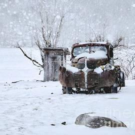 Frozen in Time by Benanne Stiens