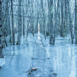 Edward Muennich - Frozen over