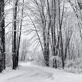 Mike Dawson - Frozen Road