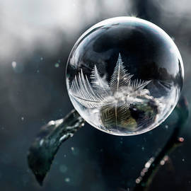 Frozen world by Jaroslaw Blaminsky