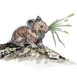 Irina Sztukowski - Frugal Mr Mouse