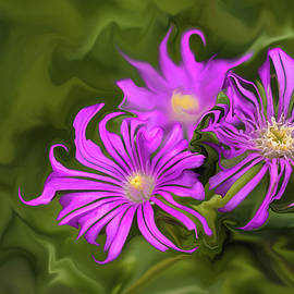 Fuchsia Flower - Digital Painting by Cristina Stefan