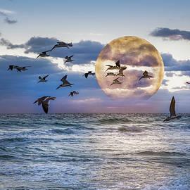 Debra and Dave Vanderlaan - Full Moon Moment