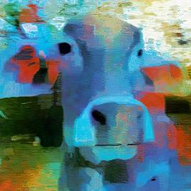 Sue Jacobi - Turquoise Abstract Fun Cow Rajasthan India 1a