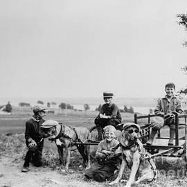 Fun with the Dogs 1905 - Jon Neidert