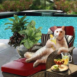 Funny Pet  Vacationing Kitty by Regina Femrite