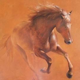 Gallop In The Desert by Vali Irina Ciobanu