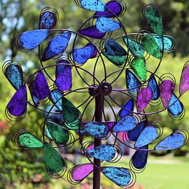 Cynthia Guinn - Garden Colored Fan
