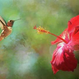 Lynn Bauer - Garden Inspirations