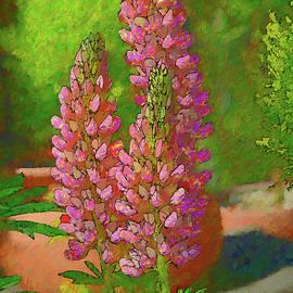 Garden Lupine III Artistic I by Linda Brody