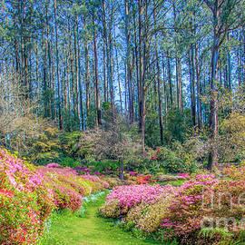 Charlie River - Garden Path