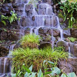 Garden Waterfall by Jim Thompson